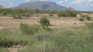 Grass flat with Elephant Mountain in the background.