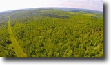 Timberland and Hunting Land 1028 Acres!