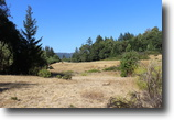 Acreage with meadows, views & forest!