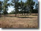 Beautiful 2 Acre Home Sites  At Hugo Lake