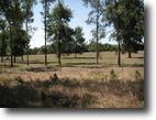 Beautiful 2 Acre Home Sites  At Hugo Lake