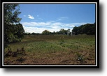 Ohio Hunting Land 66 Acres Diehlman Pond