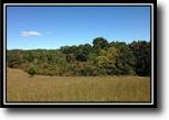 Ohio Hunting Land 47 Acres Diehlman Woods