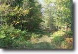 Michigan Hunting Land 65 Acres TBD Jug Rd., MLS# 1090689