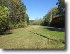 11.63 Acres In Adair County