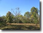 13.61 Acres In Adair County