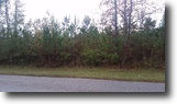 3.09 Acre Homesite In Webster County
