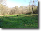Tennessee Land 27 Acres Lot 146 Rutherford Lane Smithville, Tn