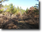 Wisconsin Hunting Land 120 Acres Town of Gordon, WI HUnting Land