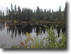 Ontario Hunting Land 45 Acres Beautiful Canadian Hunting/Fishing Land!