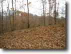 Tennessee Hunting Land 5 Acres 273 Kenway St. Cookeville, Tn 38501