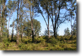 Florida Hunting Land 24 Acres Orange Lane Putnam County