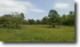 120 Acres and 2 level house in Alread, AR