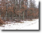 Wisconsin Hunting Land 64 Acres Town of Chicog, Washburn County