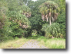 Florida Ranch Land 796 Acres Lakefront with Pasture and Hunting