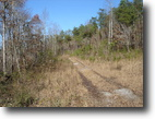 Tennessee Hunting Land 376 Acres View Of The Smokies