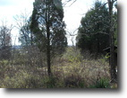 Tennessee Hunting Land 442 Acres Excellent Potential For Investment
