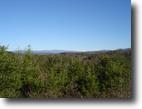 Tennessee Farm Land 56 Acres Mountain Ridge Subdivision
