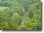 Tennessee Land 14 Acres 14.15 Ac on Begley Branch Rd Pall Mall, Tn