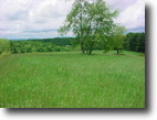7 Acres of Pasture Land in Floyd Co.