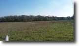 70.62 Acres Cleared Land
