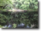 Florida Waterfront 3 Acres 2  Adjacent Lots the Suwanee AND Spring !