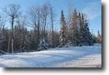 Michigan Land 2 Acres TBD M28 and Howes Rd., MLS# 1091981