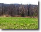 New York Hunting Land 8 Acres Finger Lakes Property w/ 772 Road Frontage