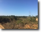 120 Acres For Sale in Choctaw County