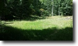 17.238 Secluded Acres, Hunting Tract