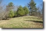 4.5 Secluded Acres, Near Town