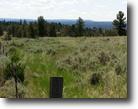 20 Acres- Round Up Montana - OAC