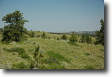 Montana Ranch Land 160 Acres Sarpy Creek Ranch - Hysham, MT
