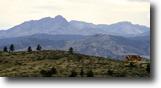Wyoming Land 35 Acres Laramie Peak Ranch - Wheatland Wy