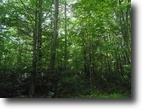 29 Acres For Sale in Carroll County