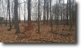 Mostly wooded acres with pole barn!
