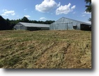 Louisiana Farm Land 13 Acres Chicken houses for sale.