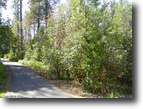 1.41 Acres w/ Community Water, Paved Roads