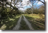 Florida Ranch Land 8 Acres Smith Ranch