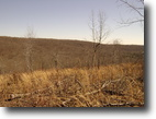 Tennessee Hunting Land 573 Acres Looking for Privacy?