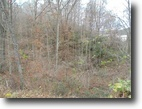 49.9 Acres Of Commercial Land For Sale!