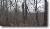 125 Acres Hunting, Marketable Timber Tract
