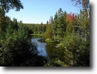 Michigan Hunting Land 225 Acres TBD Old Beechwood Rd., MLS# 1092826