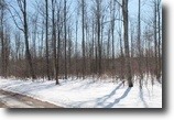 Michigan Farm Land 35 Acres Tbd Krans Rd, MLS# 1092876