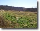 Tennessee Farm Land 2 Acres FARM  Co-op CommunityFor Sale