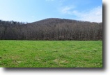 116 Acre Farm with Creek in Patrick County