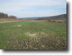 New York Farm Land 84 Acres Tillable Farmland Veteran NY Organic 83 ac