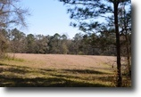Florida Hunting Land 90 Acres The Gilbert Tract