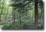 Michigan Land 2 Acres Parcel 2 Forest Dr., Skanee, MLS# 1101725
