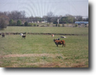 Oklahoma Land 60 Acres 60Ac Commercial & Residential Potential